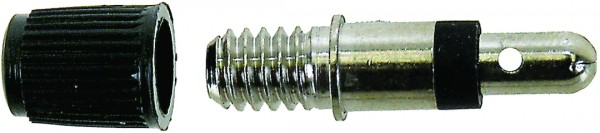 Dunlop/Blitz-Ventile mit Staubkappe - 2 Stück