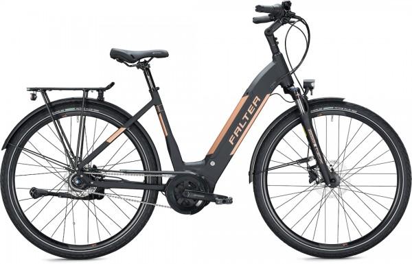 Falter E-Bike E 9.8