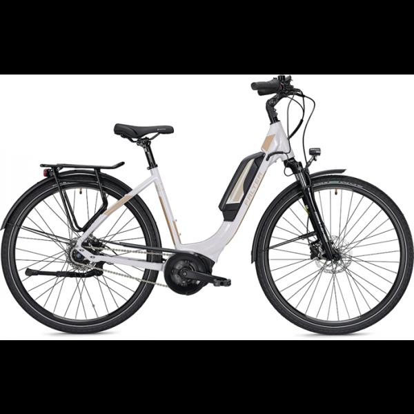 Falter E-Bike E 9.0